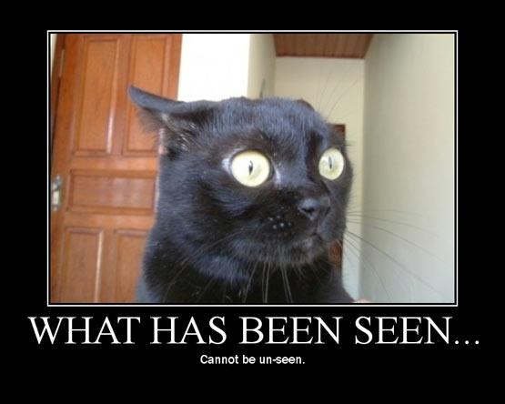 What has been seen...
