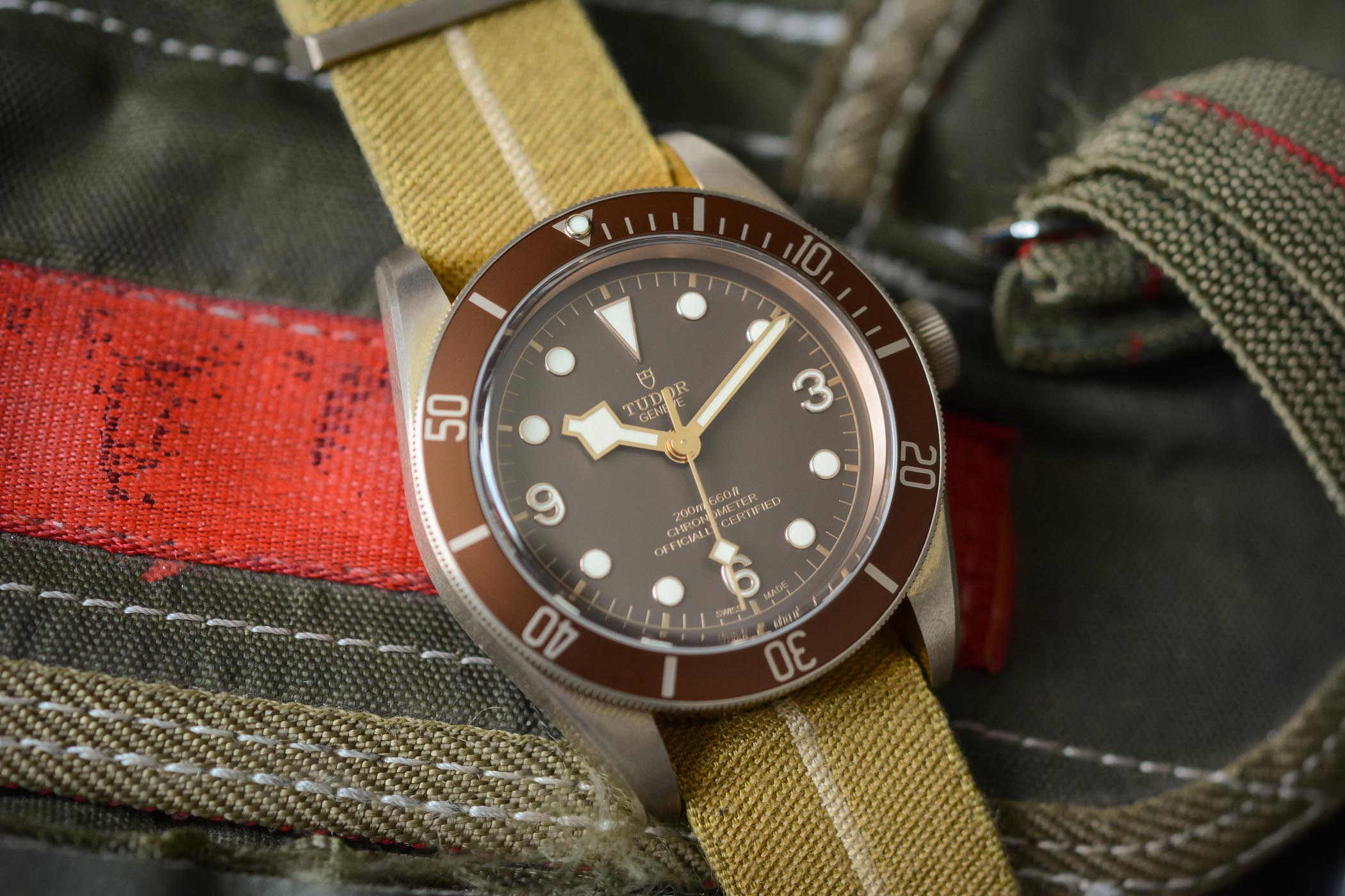 Buying Guide Bronze Watches - Tudor Black Bay Bronze
